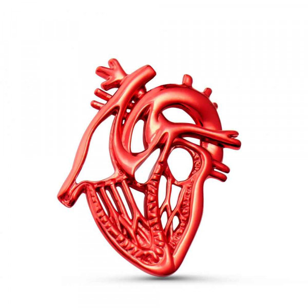 """Brooch """"Anatomical heart sectional"""" in red cleare"""